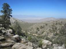 A view of Anza Borrego desert