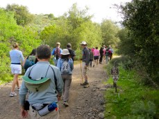 You may encounter hiking groups