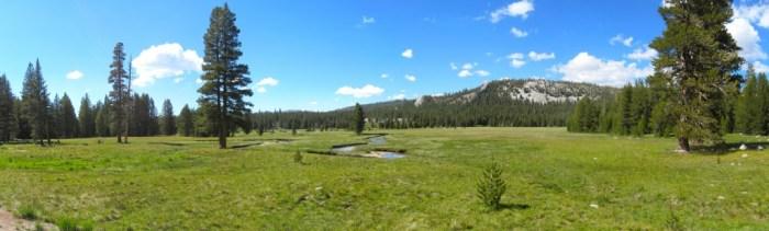Tuolumne Meadows Panorama