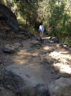 Rocky Singletrack Trail