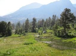 Upper Woods Creek