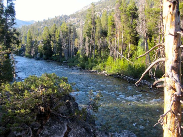 South Fork of the San Joaquin River