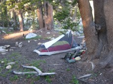 Campsite at Rosemarie Meadow