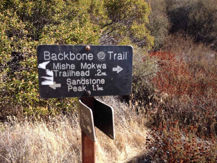 Backbone Trail Junction