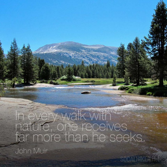 In every walk with nature, one receives far more than he seeks. - John Muir