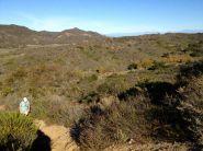Looking back down the Blackjack Trail