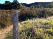 Blackjack Trail Marker