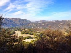 View over Topanga Canyon