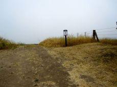 Forster Ridge