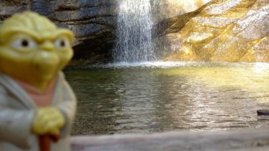 Yoda at Trail Canyon Falls