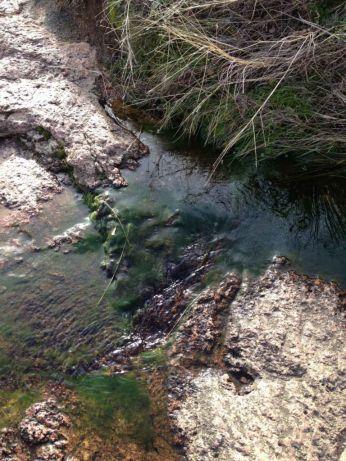 A little creek