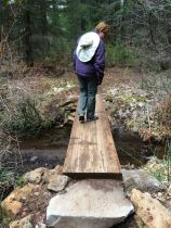 One of several small bridges on the Metolius River Trail