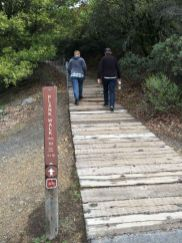 The Plank Walk Trail begins as... planks!