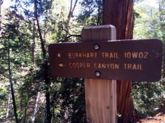 Juntion to Cooper Canyon Campground