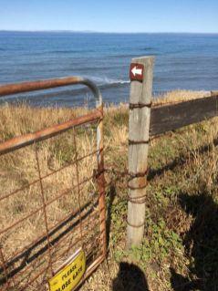 Go through this gate