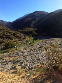 Water Still Flows in the East Fork