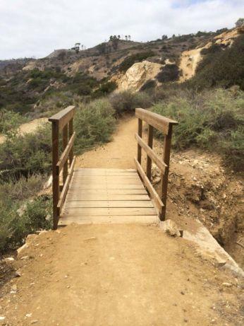 This little footbridge leads up the Rim Trail.