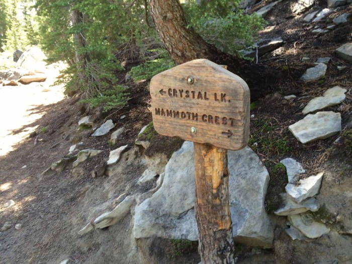 Junction with Mammoth Crest Trail