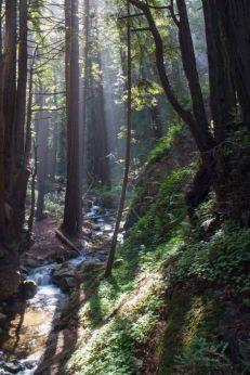 Limekiln Creek
