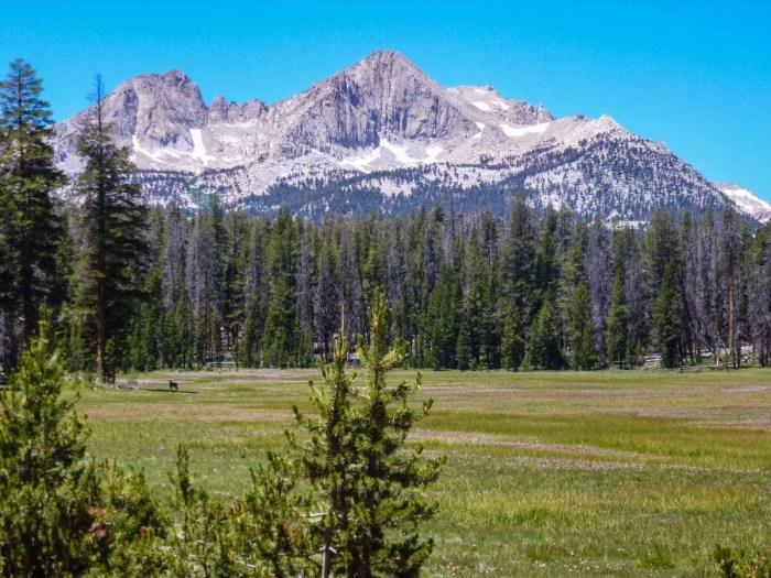 Stunning alpine meadows on the High Sierra Trail