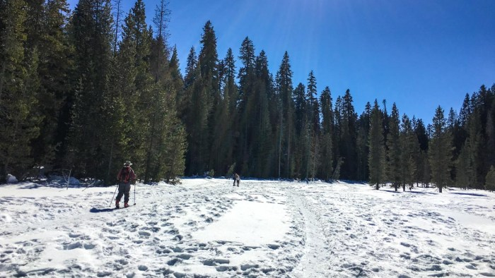 Returning from Dewey Point on the Meadow Trail