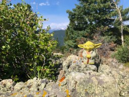 Yoda approves of Bergen Peak