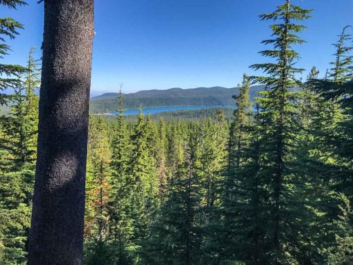 Getting higher up Paulina Peak trail