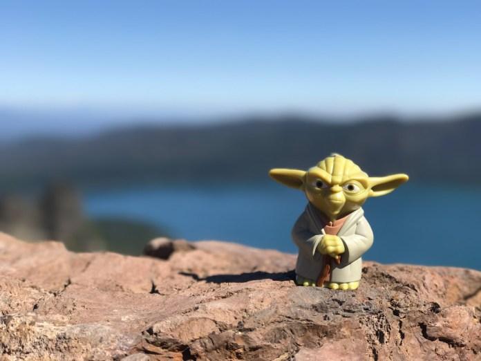 Yoda at the summit of Paulina Peak
