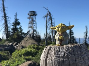 Yoda at the summit of Black Butte