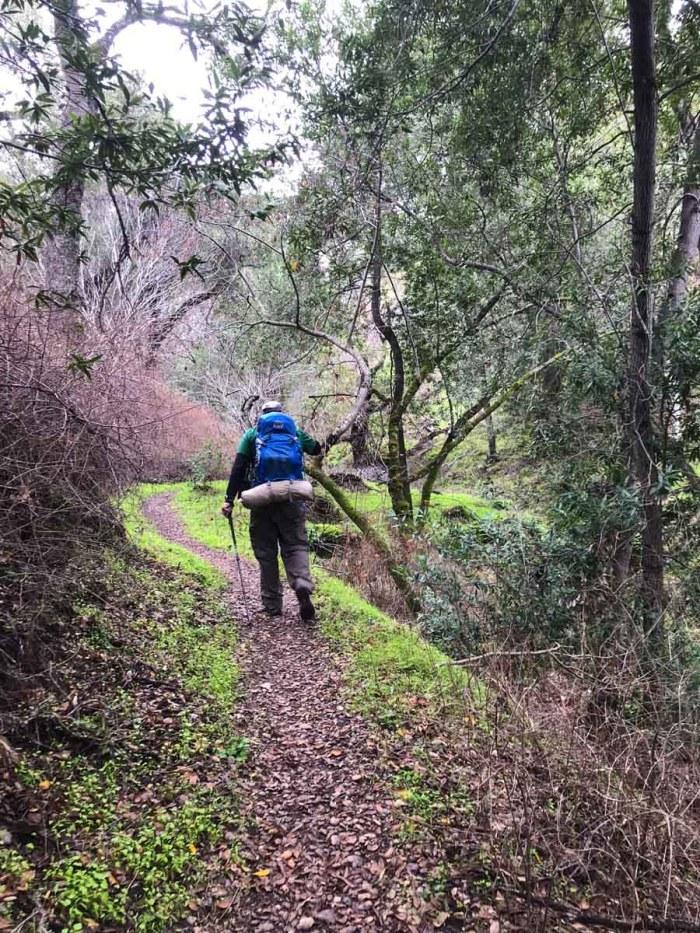 Heading up the Vallecito Trail