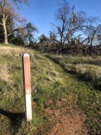 Middle Ridge Trail