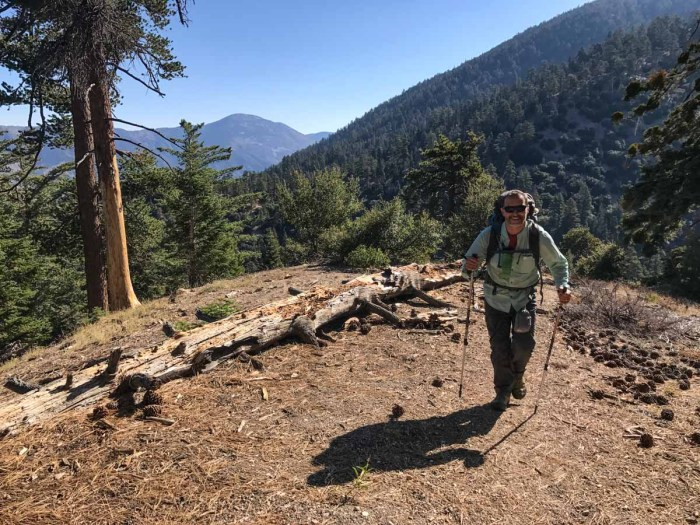 The trail from Johns Meadow Camp up to the main San Bernardino Trail is STEEP!
