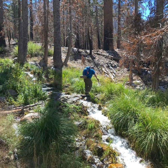 The South Fork crossing is a good place to refill your water bottles on your way down