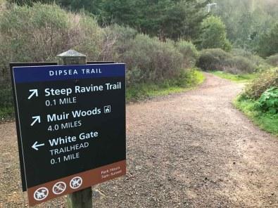 Nearing the Steep Ravine Trail