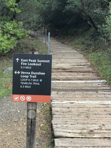 Plank Trail to the summit of Mt Tam