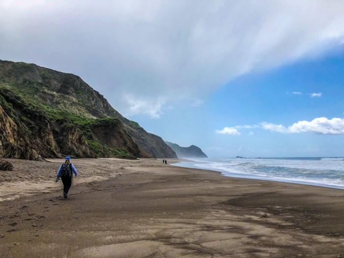 Hiking south on the beach to Alamere Falls