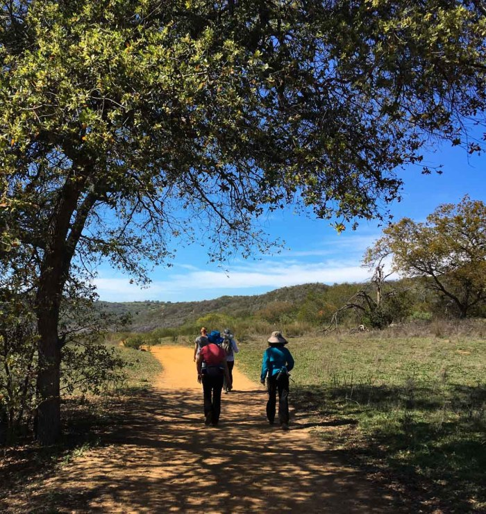 A rare patch of shade on the Sage Trail in Daley Ranch