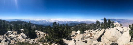 Panoramic view from the summit of Mount San Jacinto