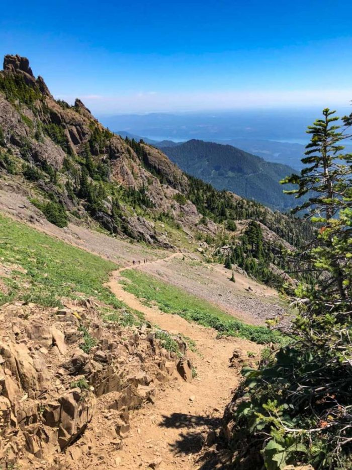 Hot and exposed up this stretch of the Mt Ellinor trail