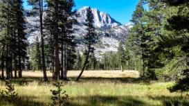 Day 2 - Vidette Meadow
