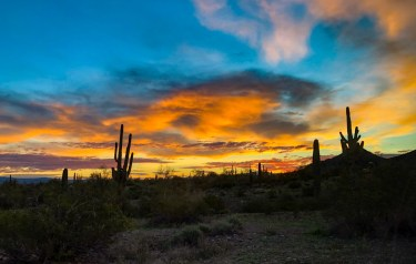 Sunrise at Picacho State Park