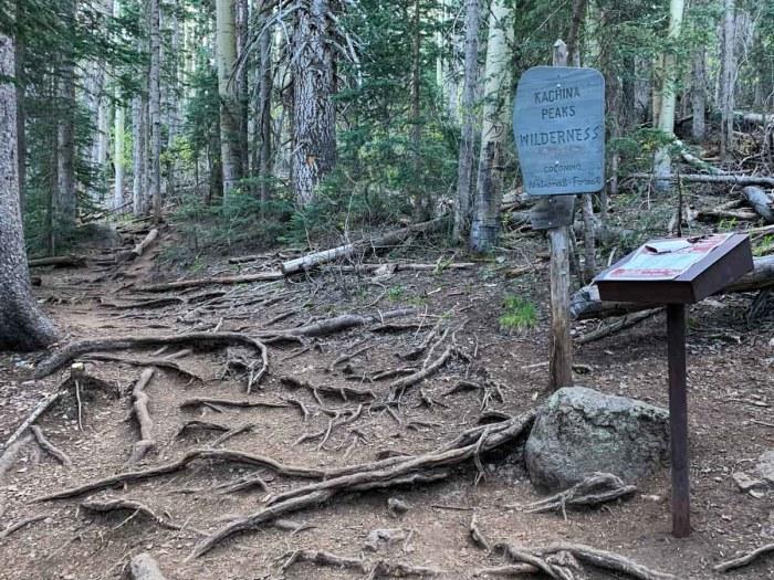 Humphreys Peak Trail Register