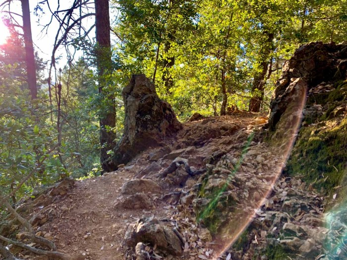 A rocky section of the Mt Saint Helena Trail