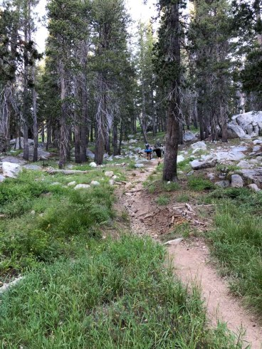 Trail up to Merced Pass