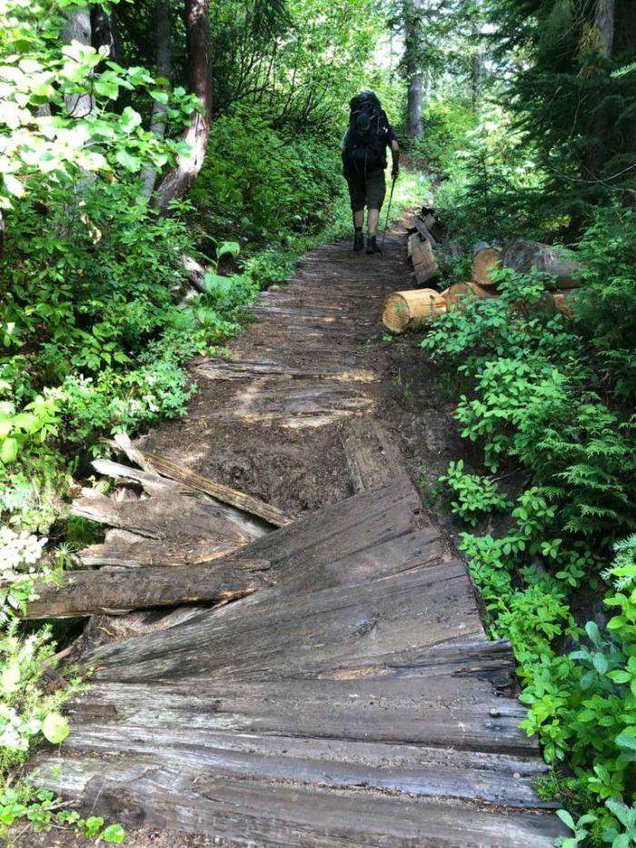 Rotting Bridge on the Wonderland Trail