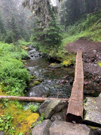 Slippery log bridge on the Wonderland Trail