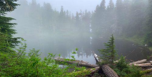 Damp morning at Golden Lake