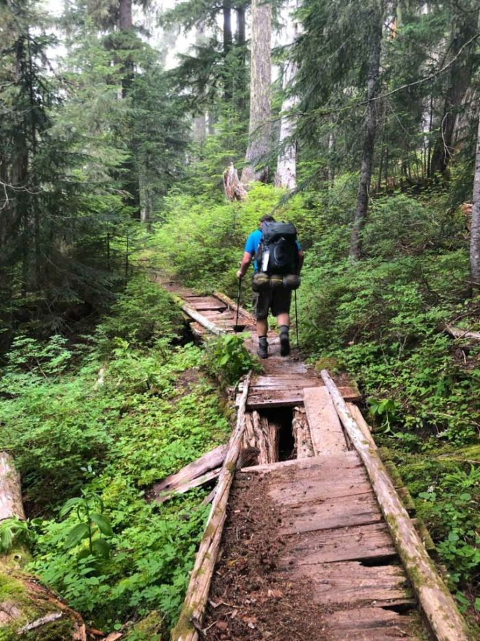 Bridges on the Wonderland Trail are varying states of decay