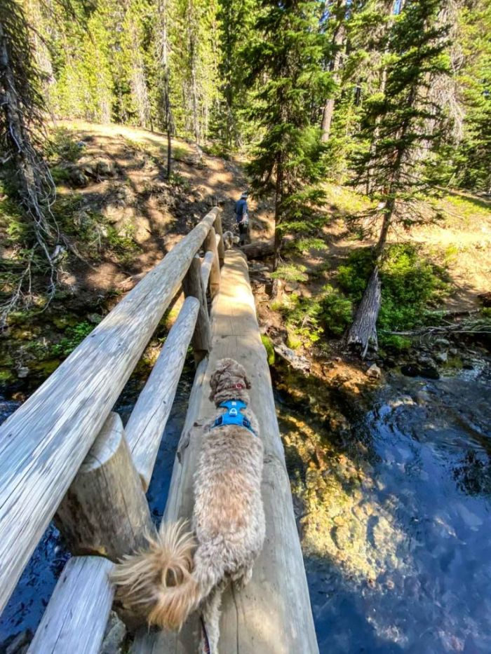 Log Bridge over Tumalo Creek