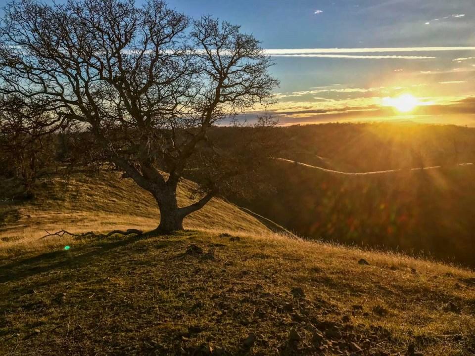 Early morning light on Rose Peak